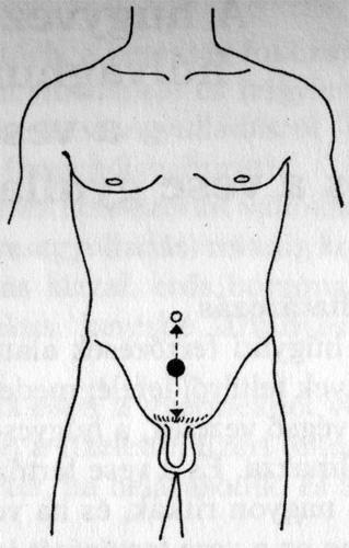 merevedési pontok péniszerősítő gyakorlatok