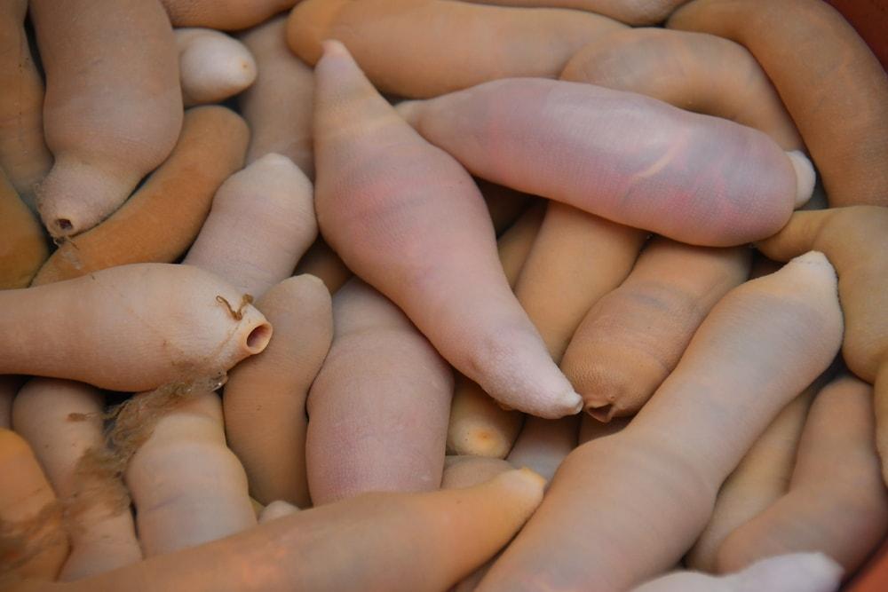milyen ételek befolyásolják a pénisz méretét tabletták hosszú erekcióra