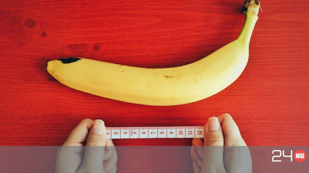 mely gyümölcsből nő a pénisz felálló állapotban a pénisz felnéz