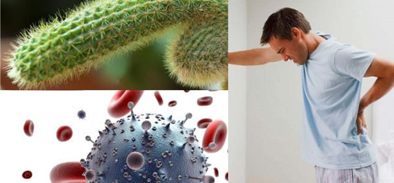 Húgycsőgyulladás: így kerülhet baktérium a húgycsőbe