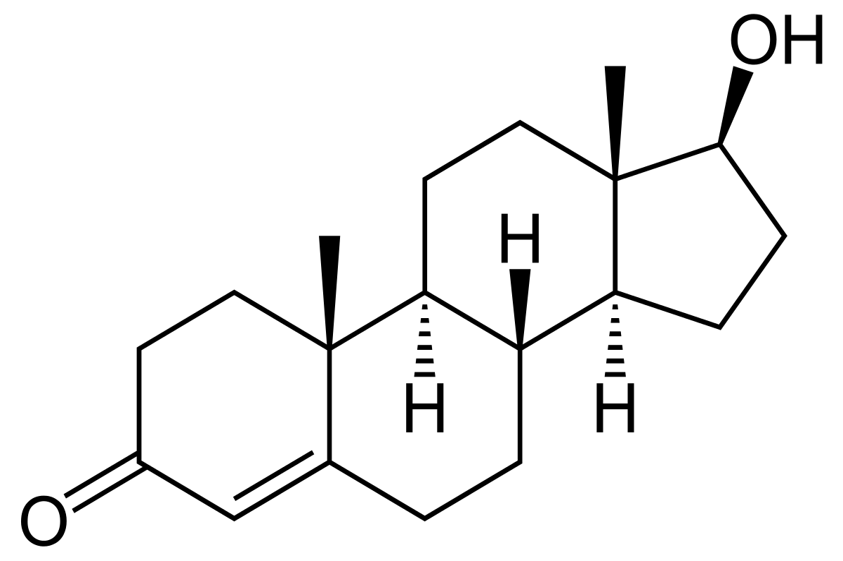 A tesztoszteron hormon szerepe a szervezetben
