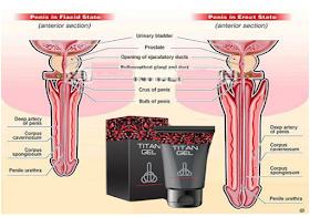 mi növelheti a pénisz növekedését mi okozza az erekció gyengülését