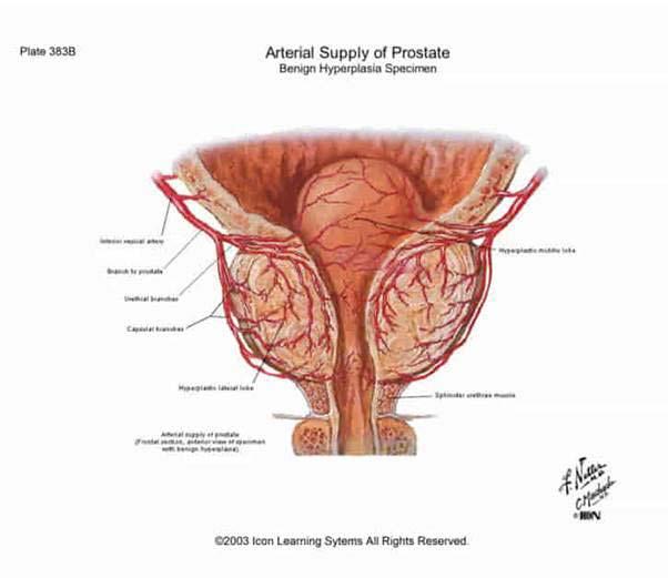 erekciós injekciók a péniszben a partnernek nincs merevedése