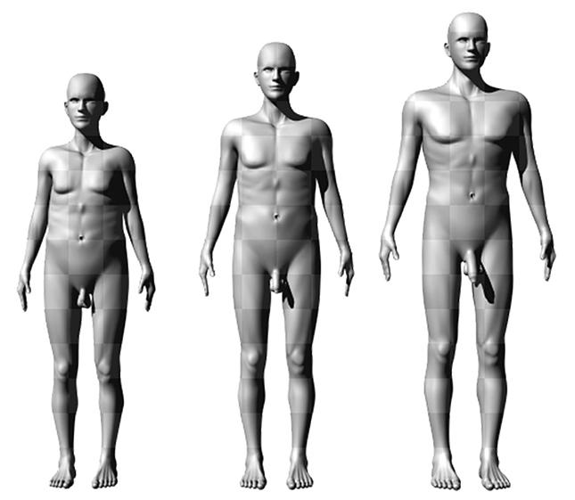 Kiderült, hogy mekkora méretű pénisz okozza a legnagyobb gyönyört a nőknek