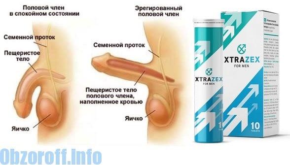 helyreállítja az erekciót az orgazmus után a prosztatagyulladás és az erekció hatékony kezelése